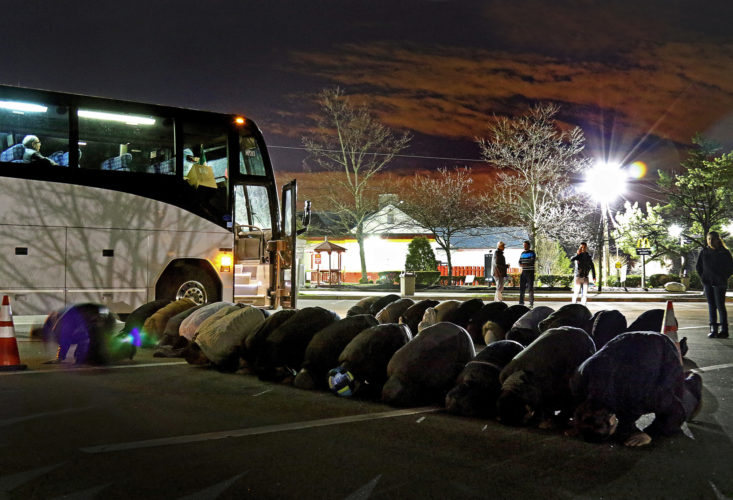 "PATERSON, NJ   03/20/2016:  A group of about 60 Muslims stop for morning prayers at a rest stop on the Garden State Parkway just before sunrise. The group was on the way to the ""March for Syrian Freedom"" down in Washington DC early this morning. The bus left the Omar Mosque in Paterson at 530a.m., and was one of two buses leaving Paterson this morning. The rally, which commemorates the 5th anniversary of when the conflict began as an anti-government uprising with protesters taking to the streets on March 15, 2011, was designed to bring attention to the global humanitarian crisis and raise money to aid Syrian refugees worldwide. The program will include an interfaith conference at the Lincoln memorial, to be followed by a march to the White House.  Five years after it began, Syria's civil war is among the worst humanitarian crisis of our time. The civil unrest has killed more than 220,000 of its citizens, and it has been estimated that over 11 million people have been forced to leave their homes. Bombings have destroyed cities, human rights violations are widespread, and basic human necessities like food, housing, and medical care are sparse. Roughly half of Syria's population has fled to either neighboring countries or to Europe, many risking their lives in hopes of finding acceptance and opportunity abroad, while hundreds of thousands remain stranded in refugee camps across the Middle East, Europe, and the Mediterranean region prompting rights groups to accuse the international community of failing Syria."